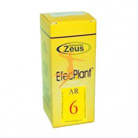 EFECPLANT 6 AR ZEUS