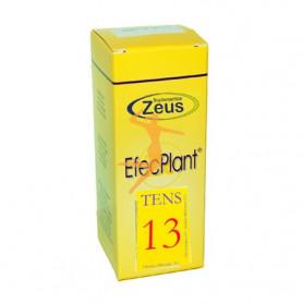 EFECPLANT 13 TENS ZEUS
