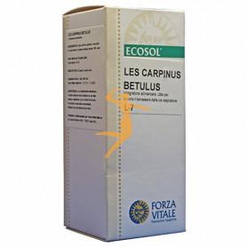 LES CARPINUS BETULUS 50Ml. FORZA VITALE