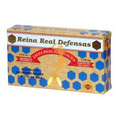 REINA REAL DEFENSAS (JALEA REAL) ROBIS