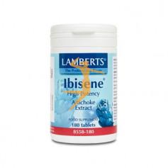 IBISENE LAMBERTS
