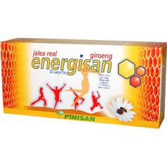 ENERGISAN 20 VIALES PINISAN